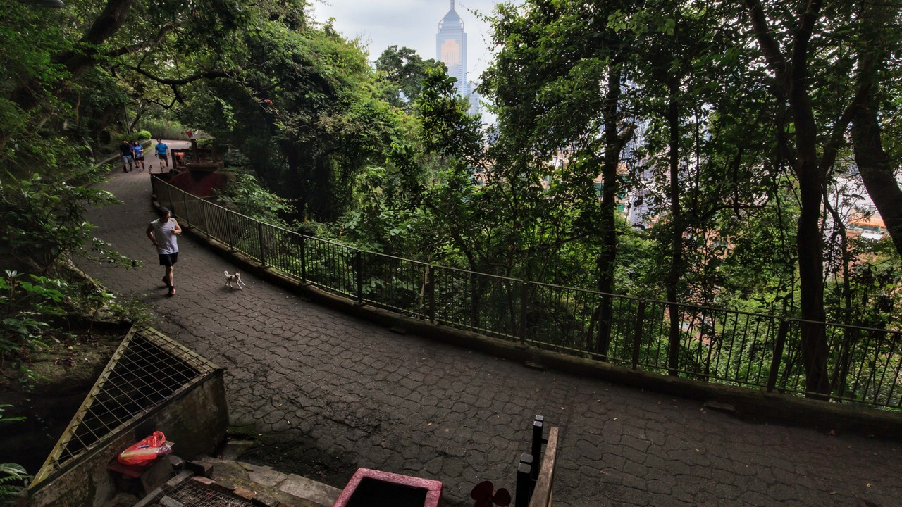 Hike Wan Chai Gap Road for striking skyline views just a stone's throw from the city