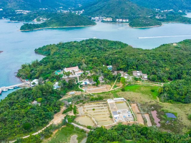 Explore Hakka culture on scarcely inhabited island, Yim Tin Tsai