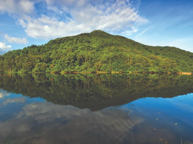 Experience abundant nature and wildlife on the Lau Shui Heung to Fung Yuen hike