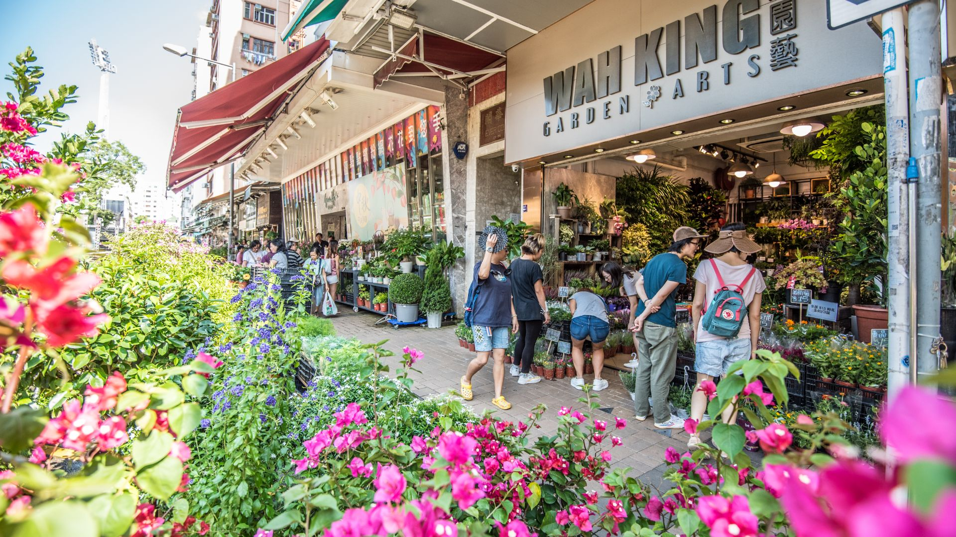 What to buy at the most unique shopping streets in Hong Kong